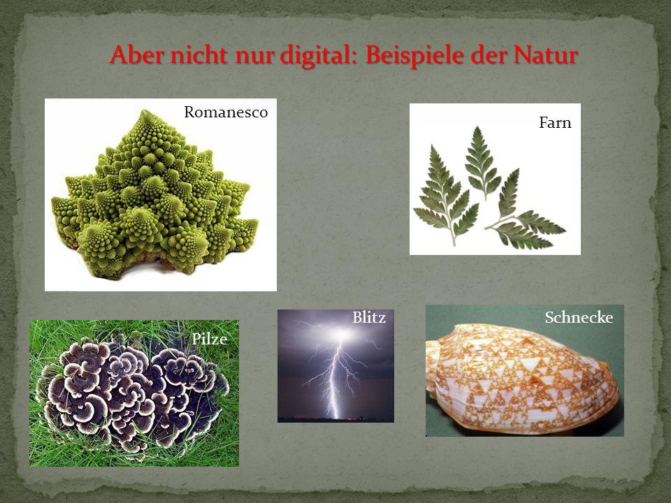 Aber nicht nur digital: Beispiele der Natur