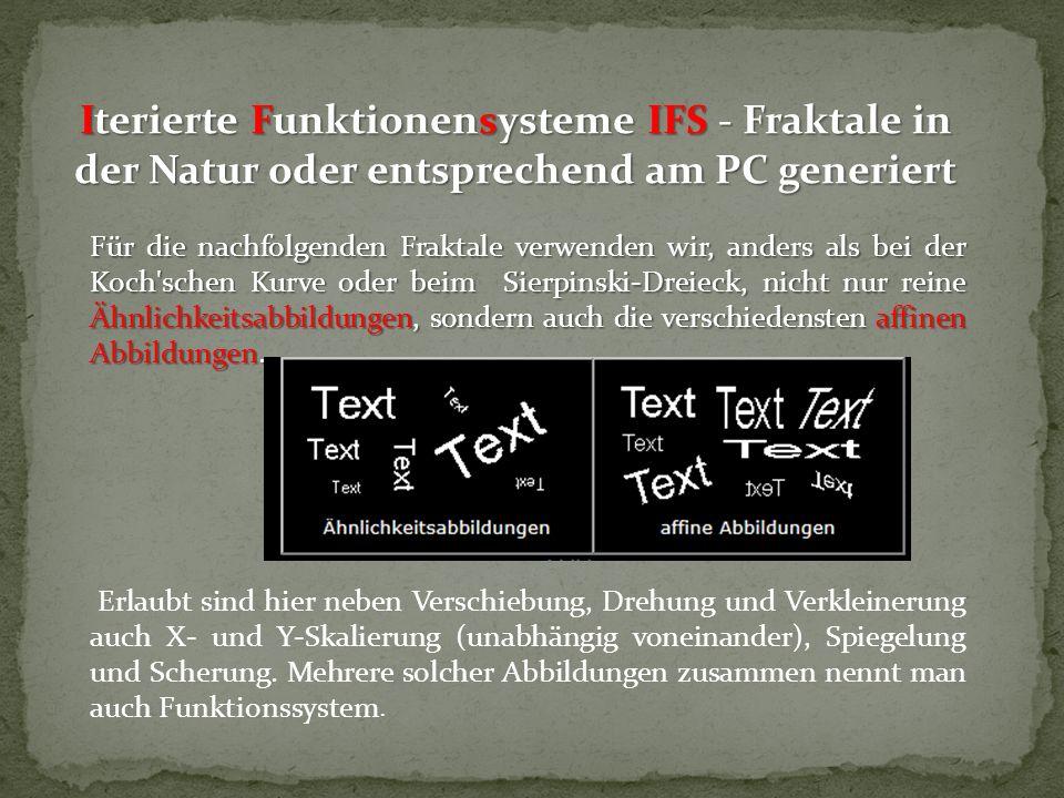 Iterierte Funktionensysteme IFS - Fraktale in der Natur oder entsprechend am PC generiert