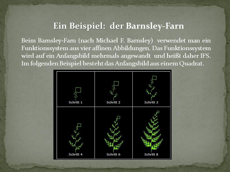Ein Beispiel: der Barnsley-Farn