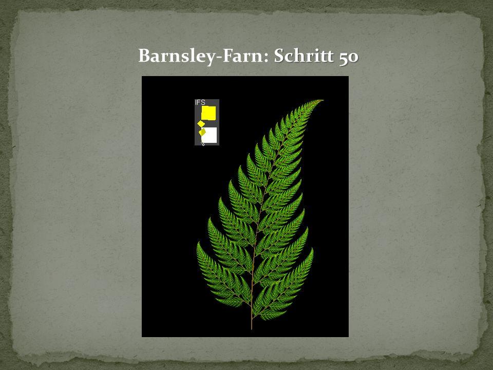Barnsley-Farn: Schritt 50