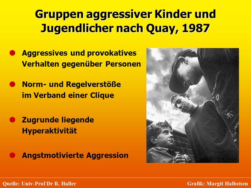 Gruppen aggressiver Kinder und Jugendlicher nach Quay, 1987