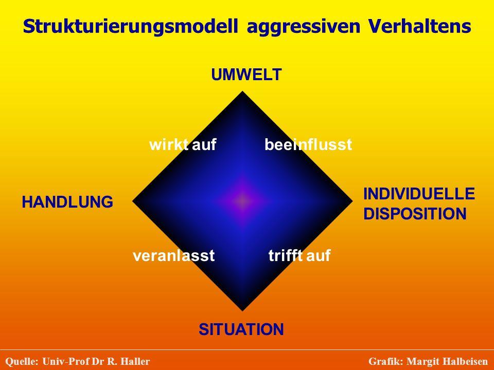 Strukturierungsmodell aggressiven Verhaltens