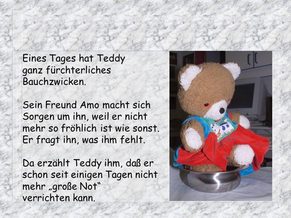 Eines Tages hat Teddy ganz fürchterliches. Bauchzwicken. Sein Freund Amo macht sich. Sorgen um ihn, weil er nicht.