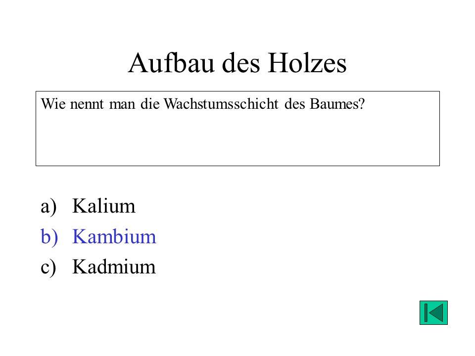 Aufbau des Holzes Kalium Kambium Kadmium