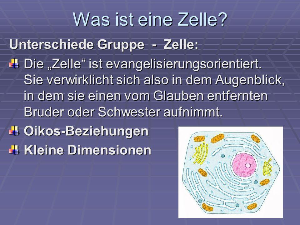 Was ist eine Zelle Unterschiede Gruppe - Zelle: