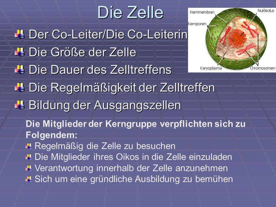 Die Zelle Der Co-Leiter/Die Co-Leiterin Die Größe der Zelle