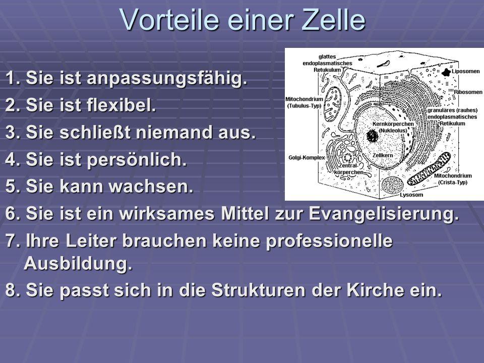 Vorteile einer Zelle 1. Sie ist anpassungsfähig. 2. Sie ist flexibel.