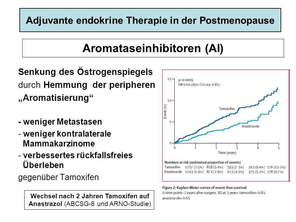 Aromataseinhibitoren (AI)