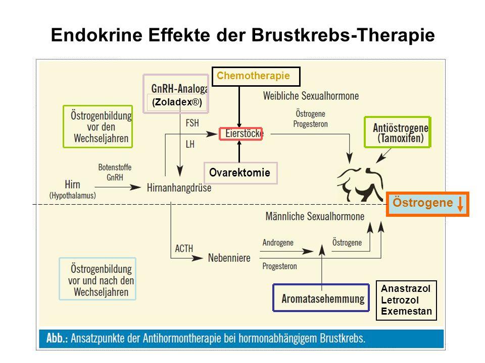 Endokrine Effekte der Brustkrebs-Therapie