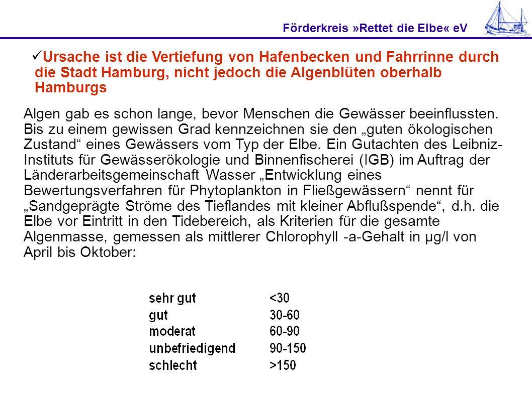 Förderkreis »Rettet die Elbe« eV