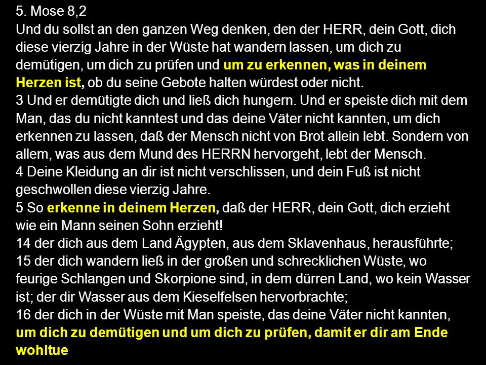 5. Mose 8,2
