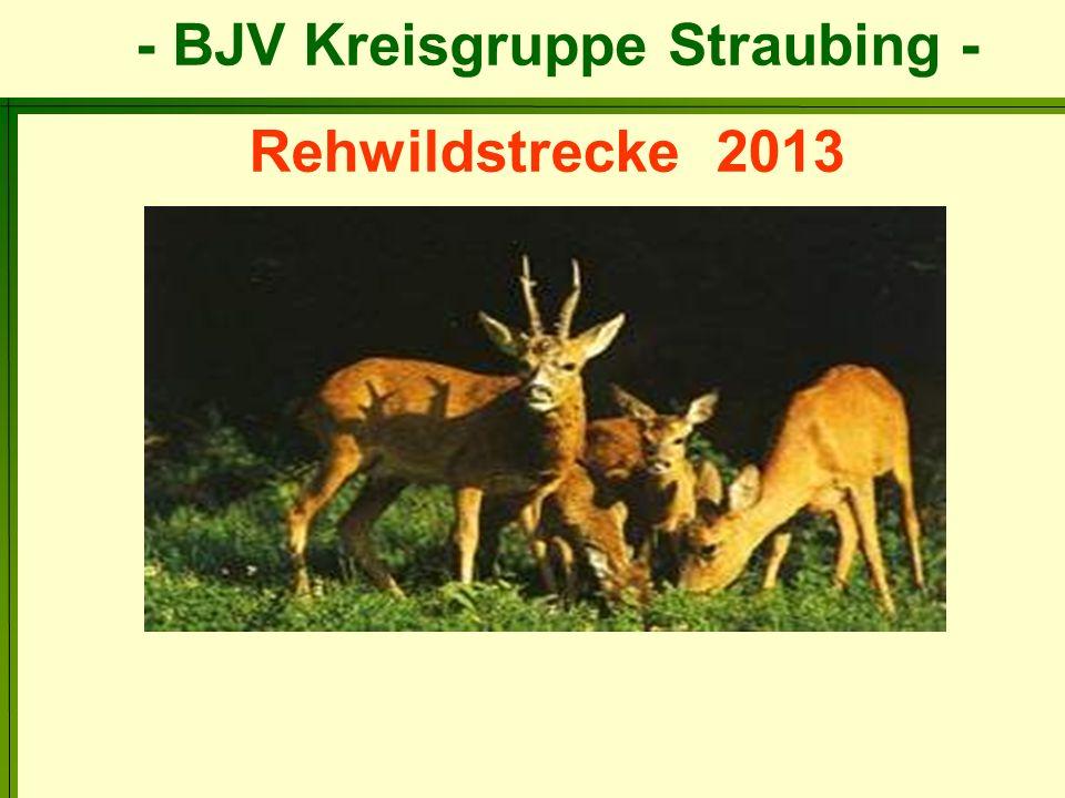 Rehwildstrecke 2013
