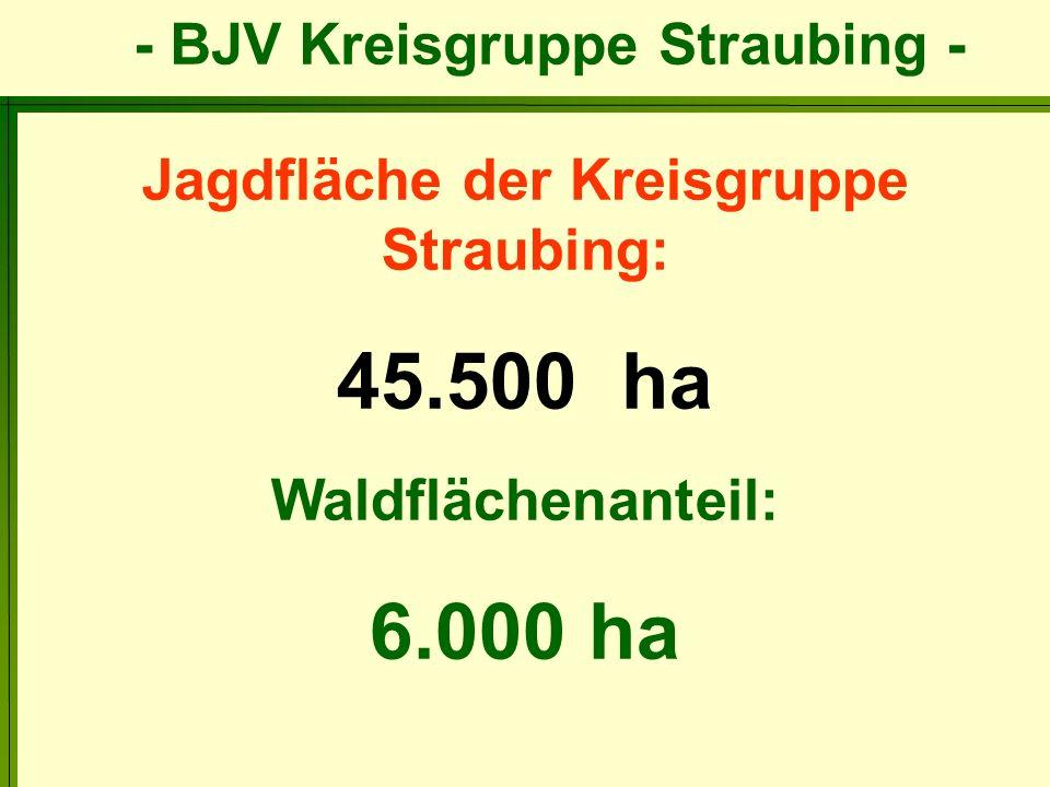 Jagdfläche der Kreisgruppe Straubing:
