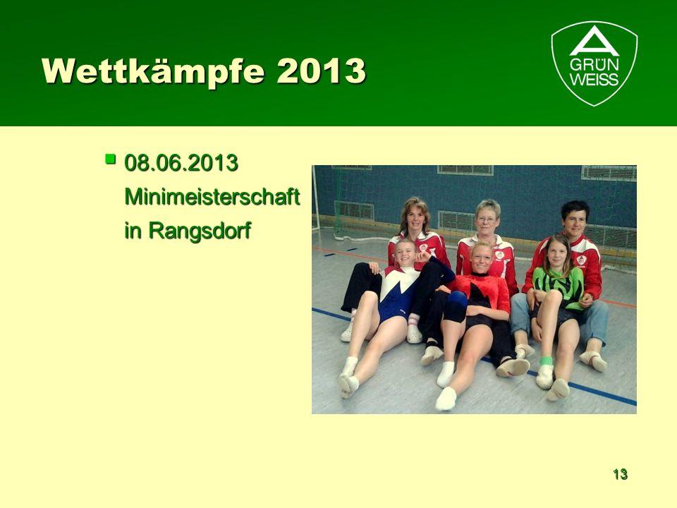 Wettkämpfe 2013 08.06.2013 Minimeisterschaft in Rangsdorf