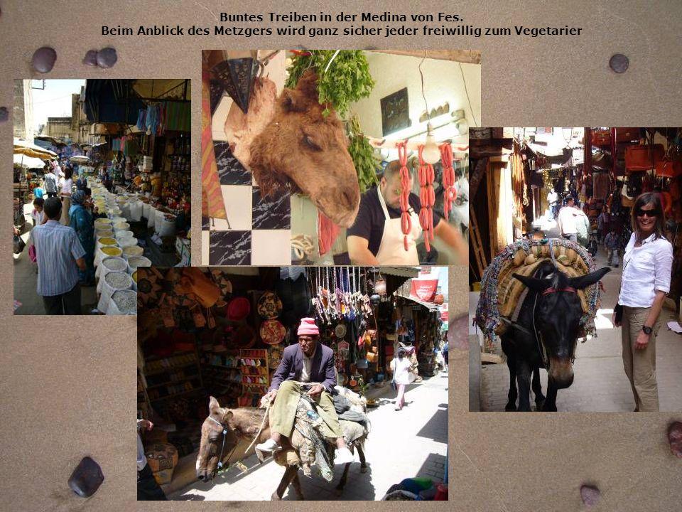 Buntes Treiben in der Medina von Fes