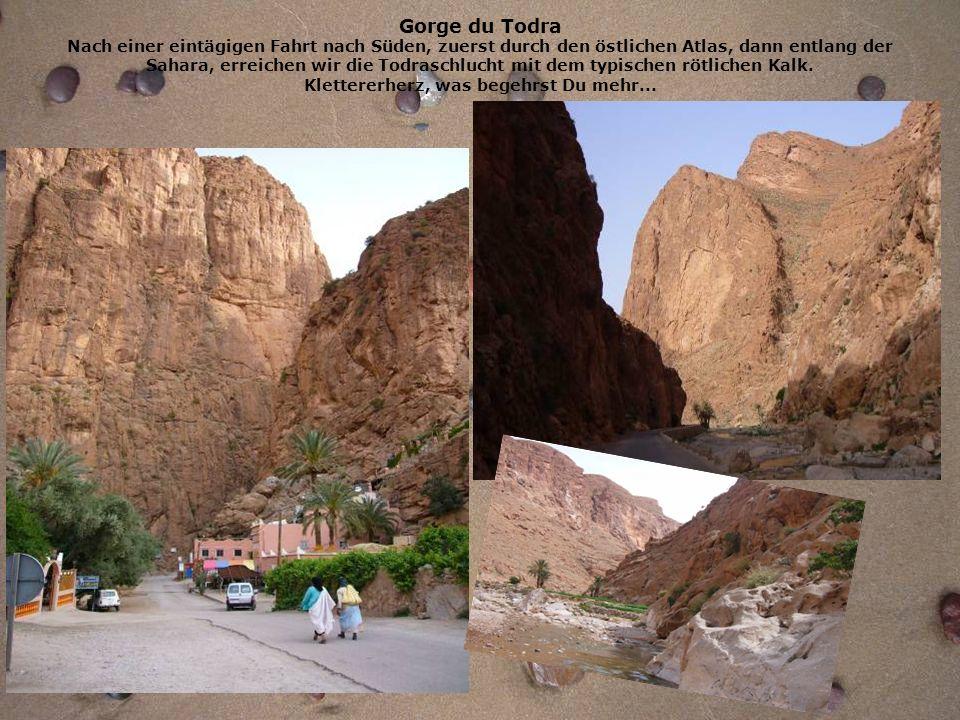 Gorge du Todra Nach einer eintägigen Fahrt nach Süden, zuerst durch den östlichen Atlas, dann entlang der Sahara, erreichen wir die Todraschlucht mit dem typischen rötlichen Kalk.