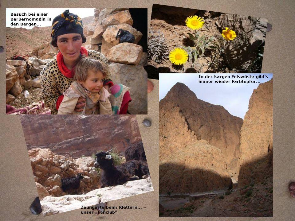Besuch bei einer Berbernomadin in. den Bergen... In der kargen Felswüste gibt's. immer wieder Farbtupfer...