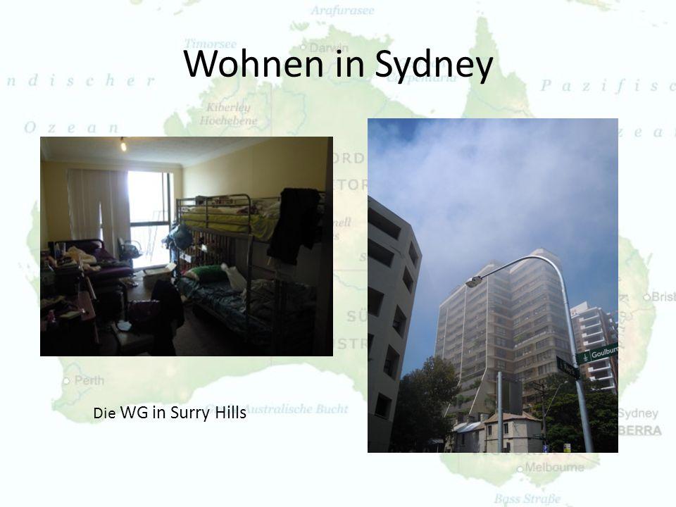 Wohnen in Sydney Die WG in Surry Hills