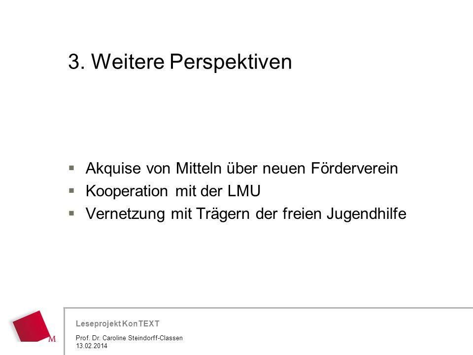 3. Weitere Perspektiven Akquise von Mitteln über neuen Förderverein