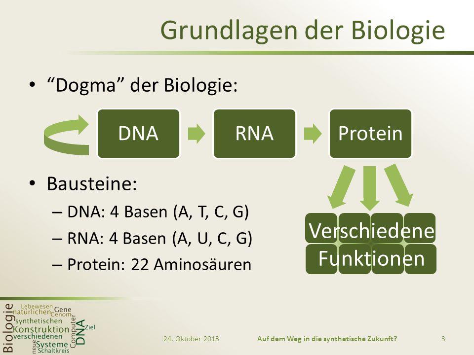 Grundlagen der Biologie