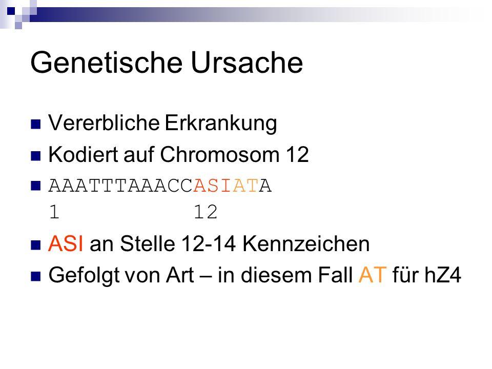 Genetische Ursache Vererbliche Erkrankung Kodiert auf Chromosom 12