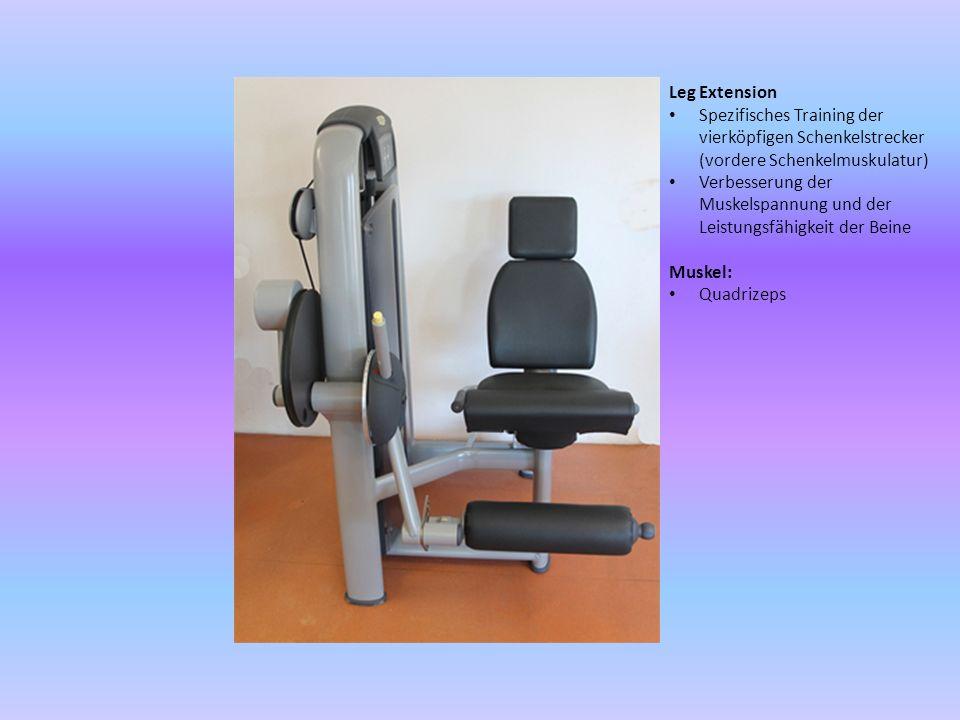 Leg Extension Spezifisches Training der vierköpfigen Schenkelstrecker (vordere Schenkelmuskulatur)