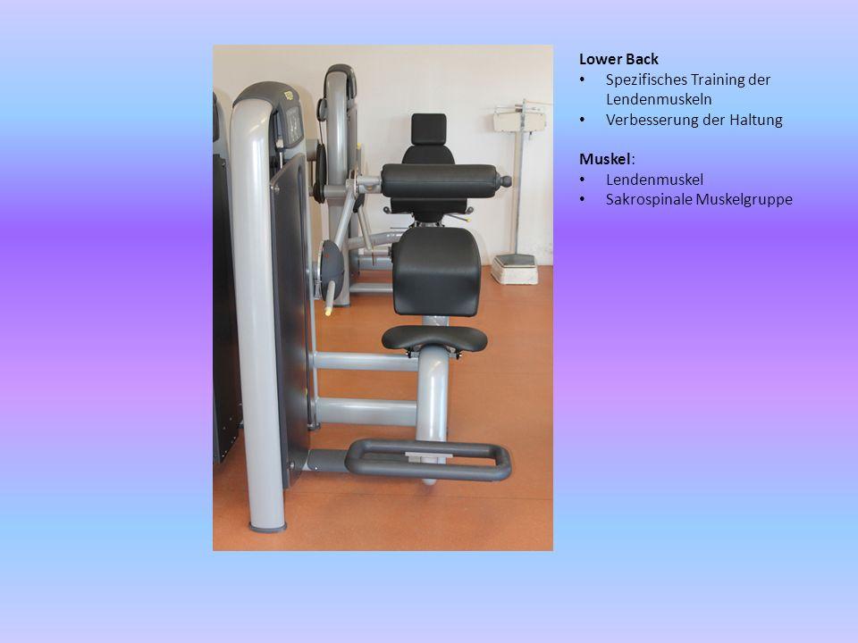 Lower Back Spezifisches Training der Lendenmuskeln. Verbesserung der Haltung. Muskel: Lendenmuskel.