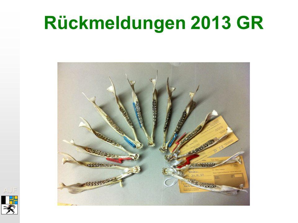 Rückmeldungen 2013 GR