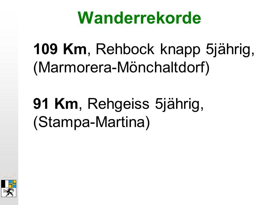 Wanderrekorde 109 Km, Rehbock knapp 5jährig, (Marmorera-Mönchaltdorf)