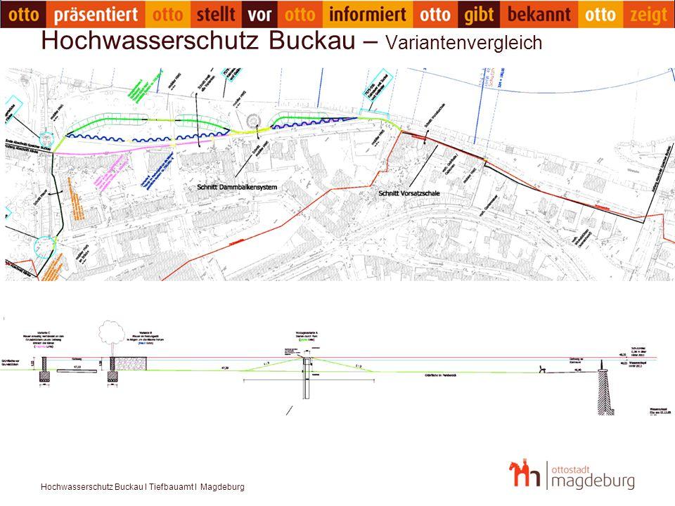 Hochwasserschutz Buckau – Variantenvergleich
