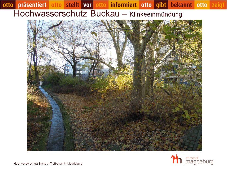 Hochwasserschutz Buckau – Klinkeeinmündung