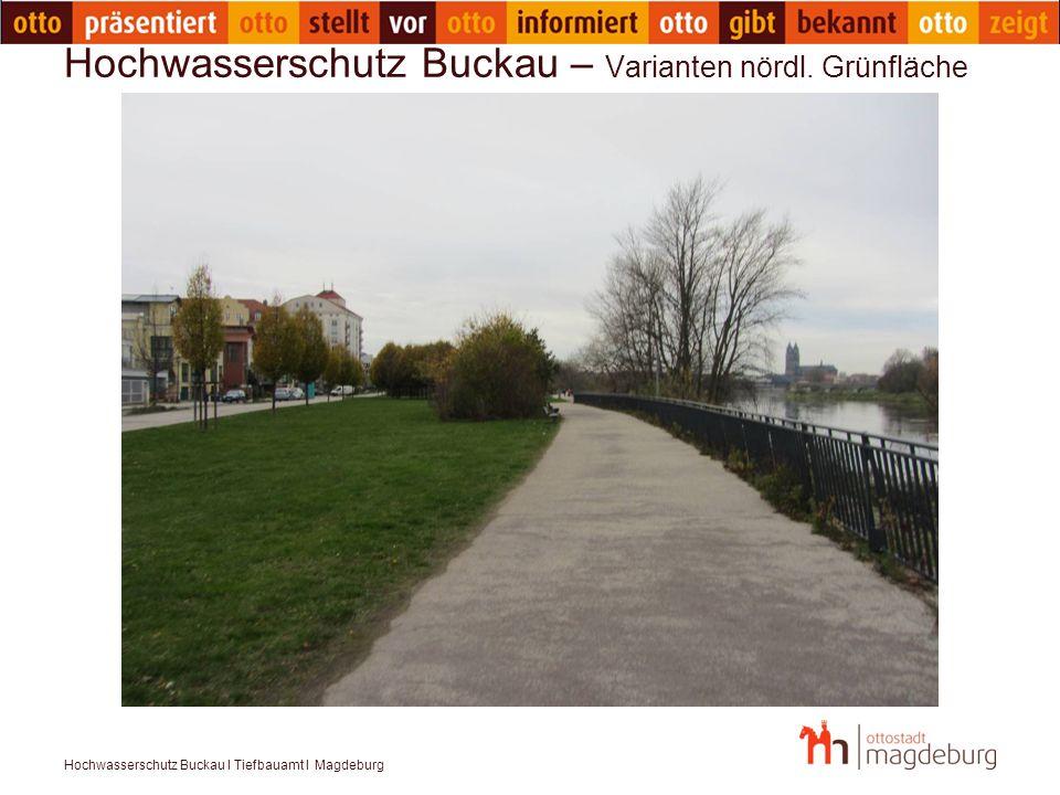 Hochwasserschutz Buckau – Varianten nördl. Grünfläche
