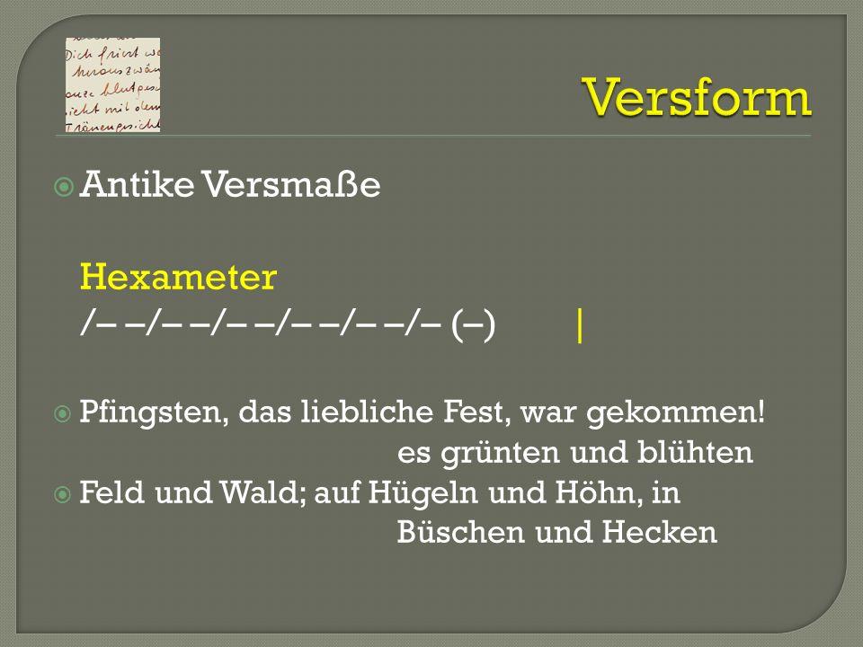 Versform Antike Versmaße Hexameter /– –/– –/– –/– –/– –/– (–) |