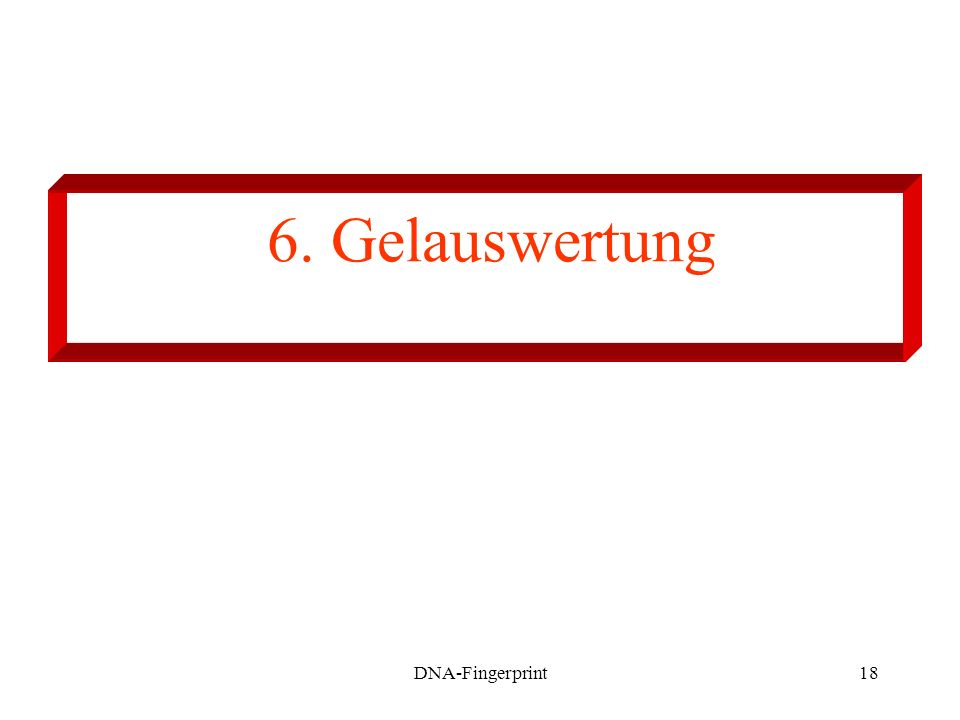 6. Gelauswertung DNA-Fingerprint