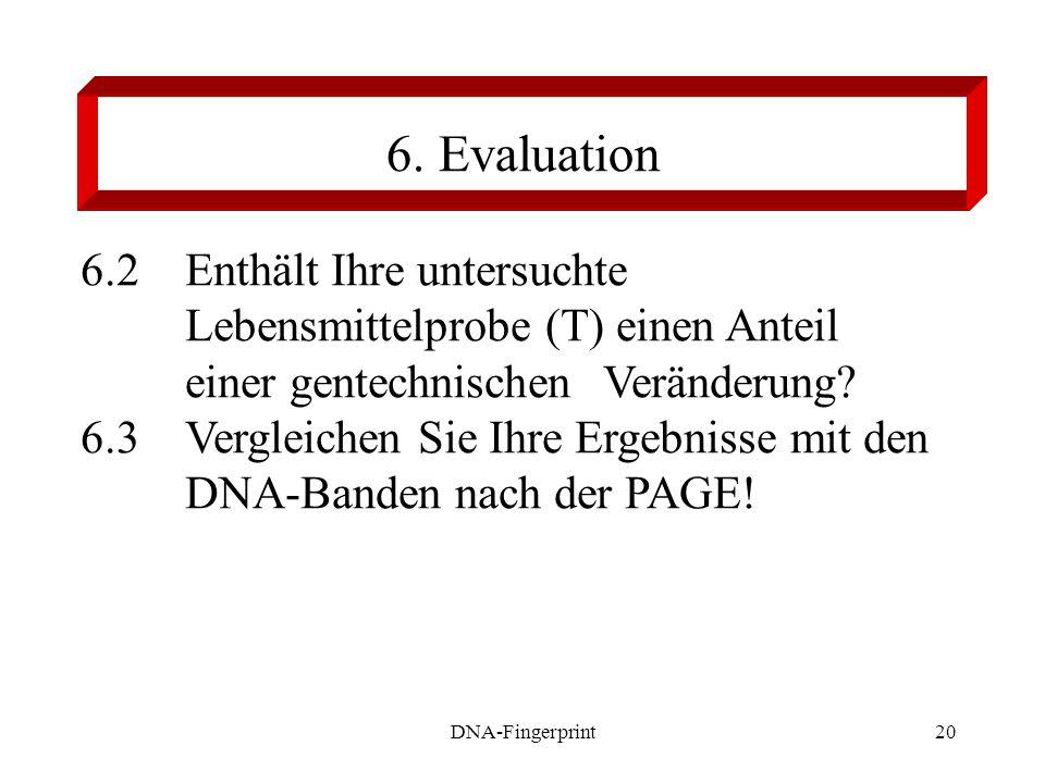 6. Evaluation 6.2 Enthält Ihre untersuchte Lebensmittelprobe (T) einen Anteil einer gentechnischen Veränderung