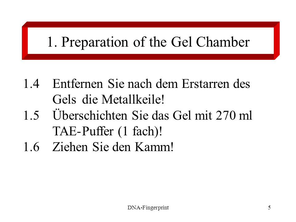 1. Preparation of the Gel Chamber