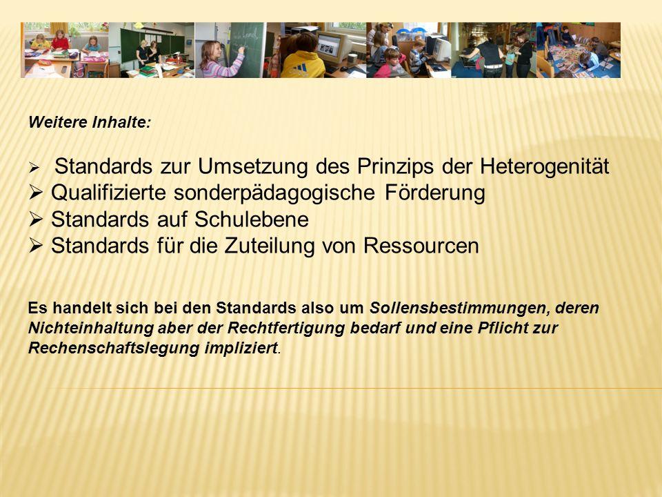 Qualifizierte sonderpädagogische Förderung Standards auf Schulebene