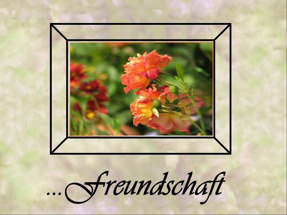 …Freundschaft