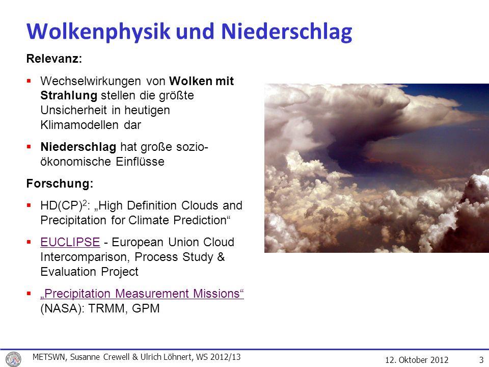 Wolkenphysik und Niederschlag