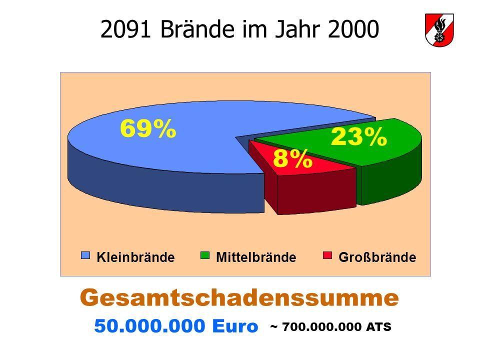 69% 23% 8% 2091 Brände im Jahr 2000 Gesamtschadenssumme