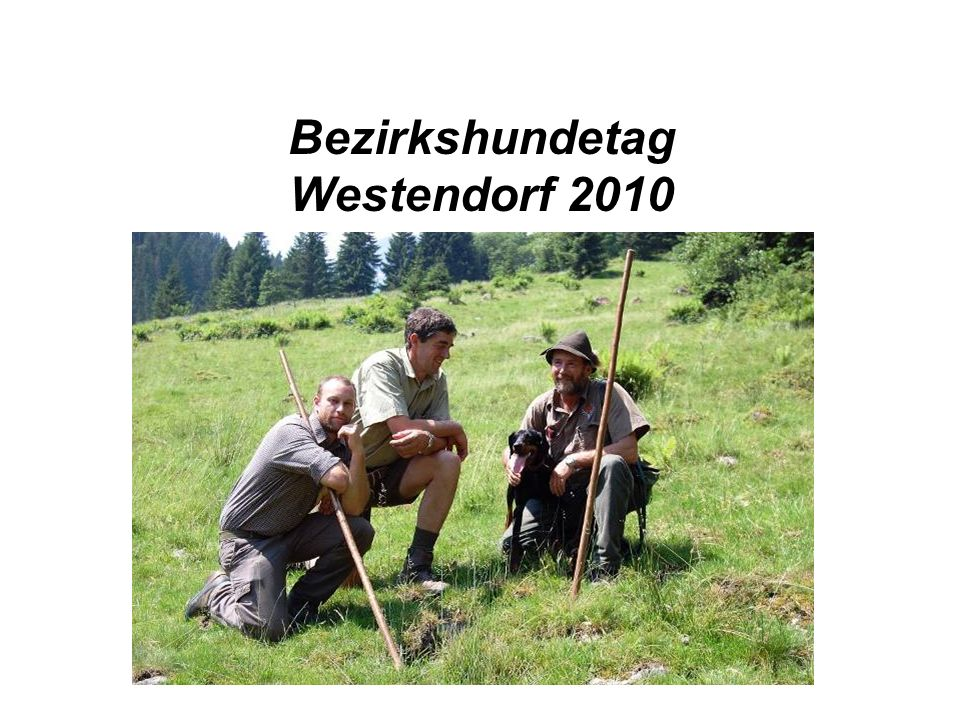 Bezirkshundetag Westendorf 2010