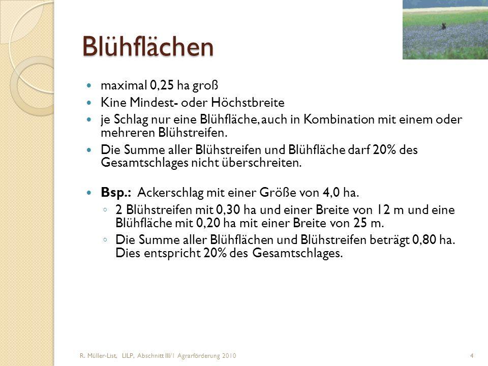 Blühflächen maximal 0,25 ha groß Kine Mindest- oder Höchstbreite