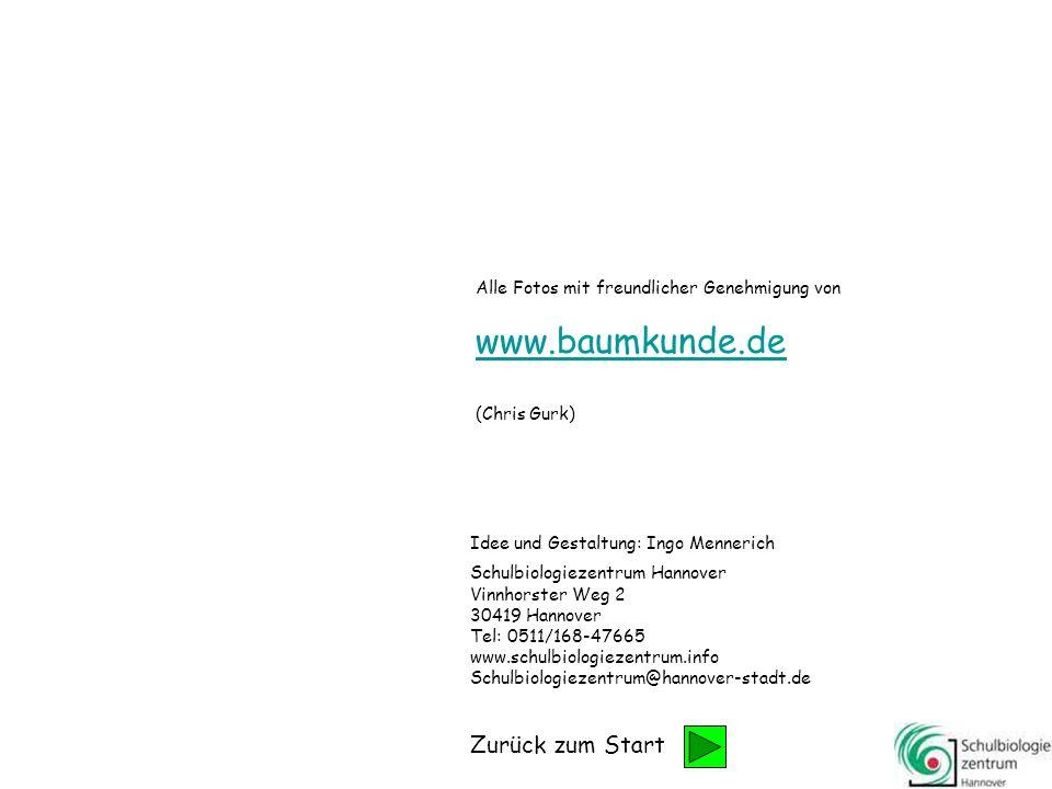 www.baumkunde.de Zurück zum Start