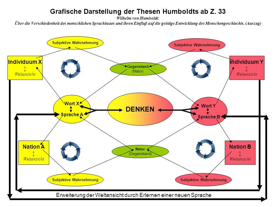Grafische Darstellung der Thesen Humboldts ab Z. 33 DENKEN