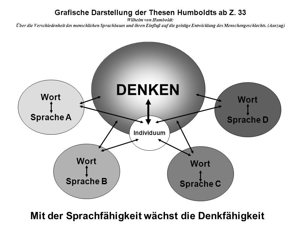 Grafische Darstellung der Thesen Humboldts ab Z. 33