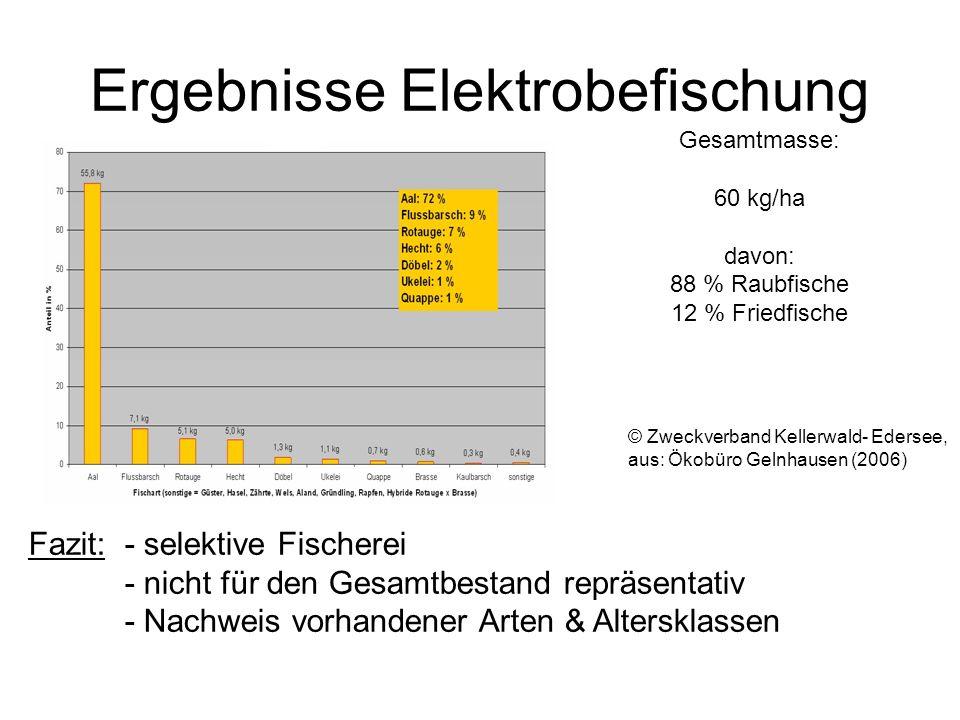 Ergebnisse Elektrobefischung