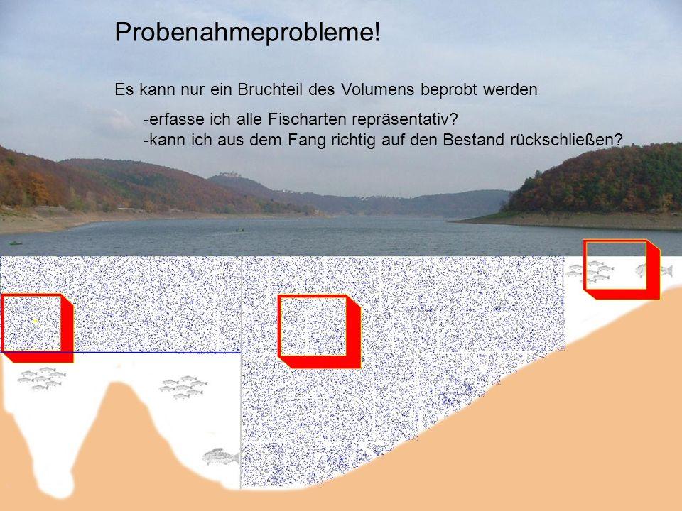 Probenahmeprobleme! Es kann nur ein Bruchteil des Volumens beprobt werden. erfasse ich alle Fischarten repräsentativ