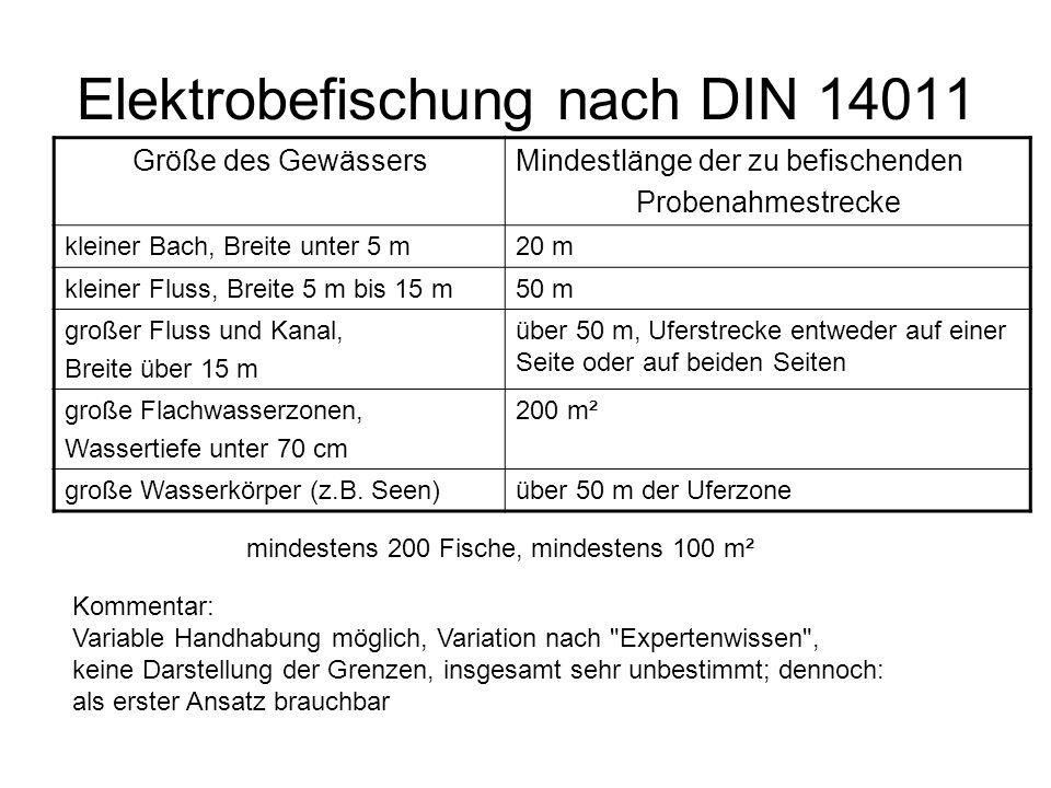 Elektrobefischung nach DIN 14011