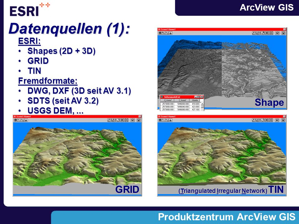 Datenquellen (1): Shape GRID ESRI: Shapes (2D + 3D) GRID TIN