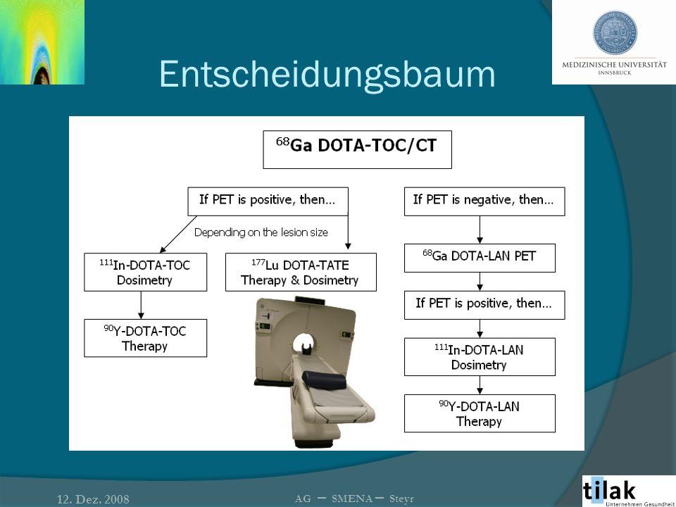 Entscheidungsbaum 12. Dez. 2008 AG – SMENA – Steyr